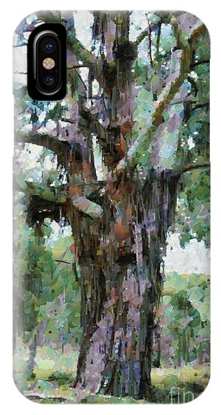 Old Gum Tree IPhone Case