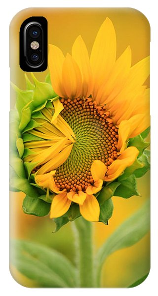 Opening Sunflower IPhone Case