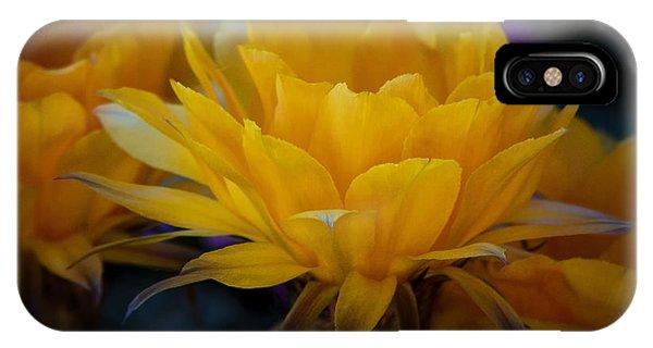 Orange Cactus Flowers  IPhone Case