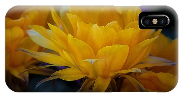 Orange Cactus Flowers  IPhone Case