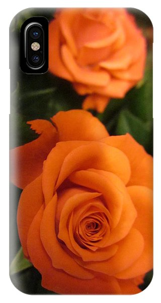 Orange Delight IPhone Case
