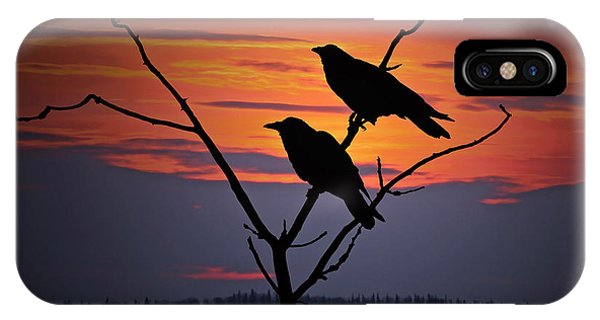 2 Ravens IPhone Case