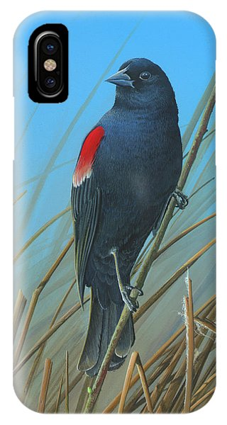 Red-winged Black Bird IPhone Case