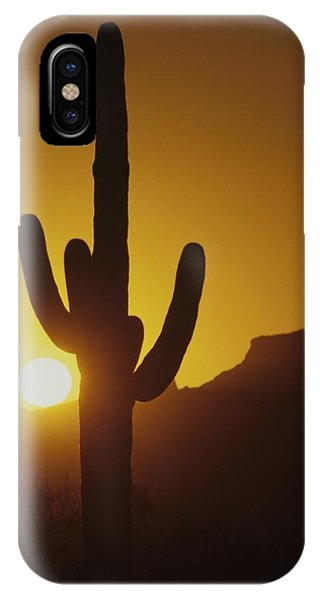 Saguaro Cactus And Sunset IPhone Case