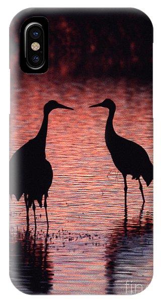 Sandhill Cranes IPhone Case