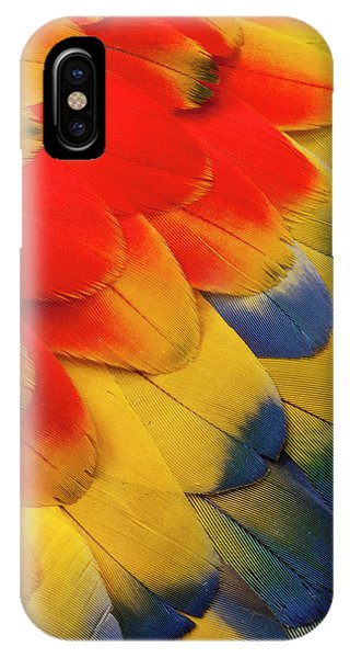 Scarlet iPhone Case - Scarlet Macaw Wing Covert Feathers by Darrell Gulin