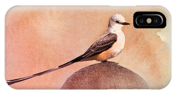 Flycatcher iPhone Case - Scissor-tailed Flycatcher by Betty LaRue