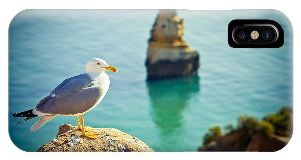 Seagull On The Rock IPhone Case