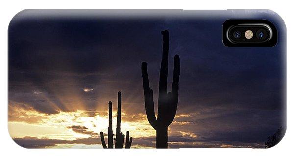 Silhouetted Saguaro Cactus Sunset At Dusk Arizona State Usa IPhone Case