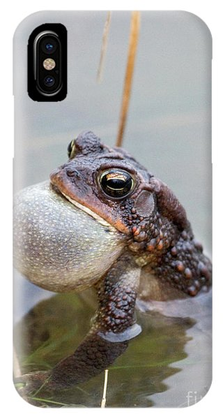 Singing A Love Song IPhone Case