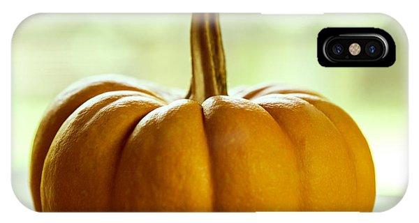 Autumn iPhone X Case - Small Orange Pumpkin by Iris Richardson