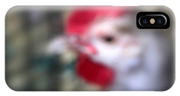State Fair Chicken IPhone Case