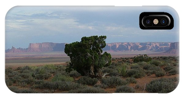 Still Life In The Desert IPhone Case