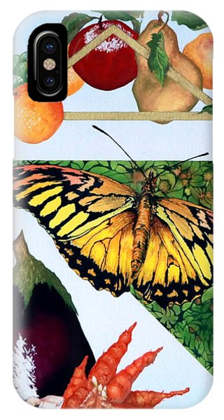 Still Life With Moth #1 IPhone Case