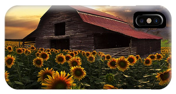 Barn iPhone Case - Sunflower Farm by Debra and Dave Vanderlaan