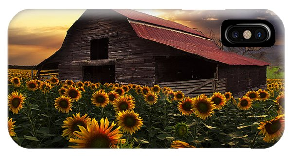 Old Barns iPhone Case - Sunflower Farm by Debra and Dave Vanderlaan