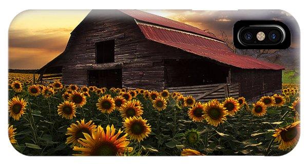 Rural iPhone Case - Sunflower Farm by Debra and Dave Vanderlaan