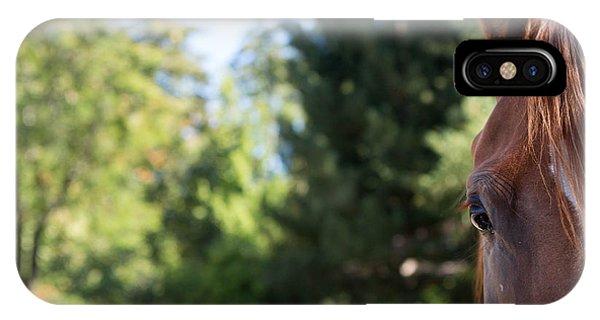 Bucolic iPhone Case - Sweet by Rebecca Cozart