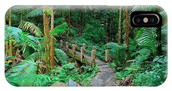 Tropical Rain Forest In San Juan IPhone Case