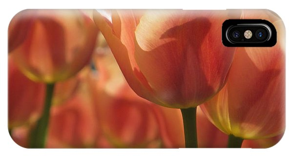 Tulips In Spring IPhone Case