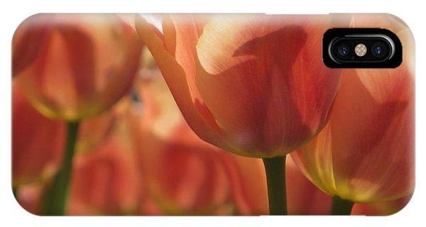 Tulips In Spring IPhone Case