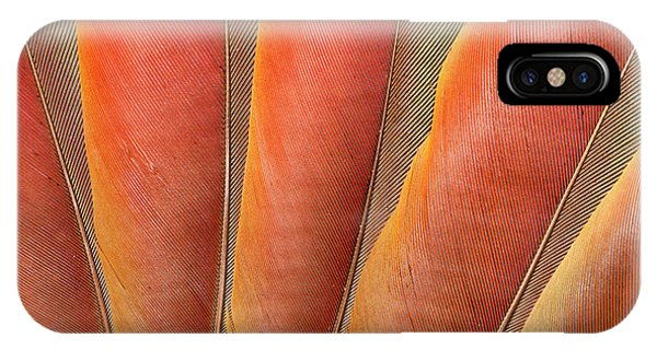 Scarlet iPhone Case - Underside Wing Coloration by Darrell Gulin
