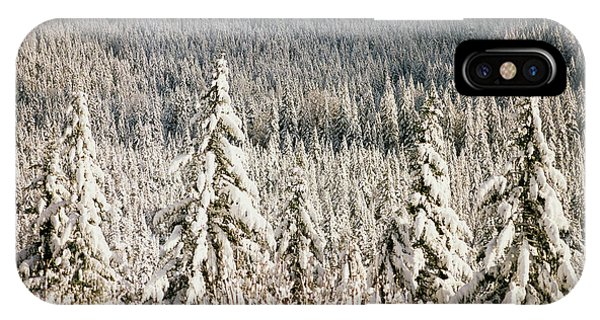 Cold Day iPhone Case - Usa, Oregon, Mt Hood National Forest by Stuart Westmorland