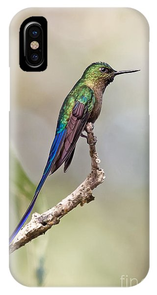 Violet-tailed Sylph IPhone Case