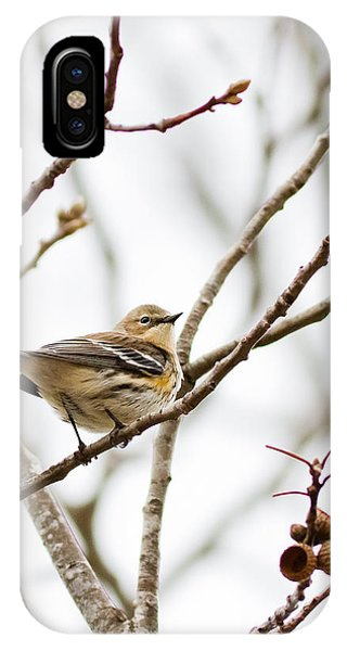 Warbler Calls IPhone Case
