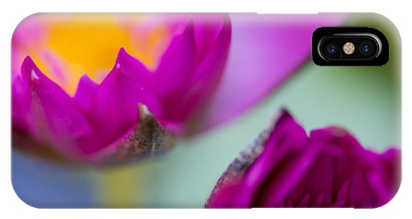 Waterlily Dream IPhone Case