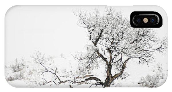 Winter Sage IPhone Case