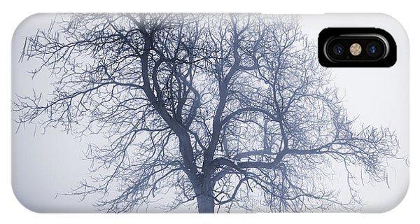 Park Bench iPhone Case - Winter Tree In Fog by Elena Elisseeva
