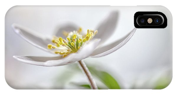 Macro iPhone Case - Wood Anemone by Mandy Disher