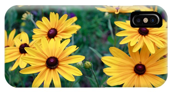 Yellow Daisy Flowers #2 IPhone Case
