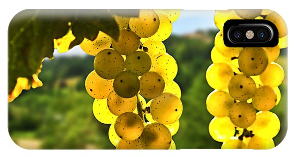 Sunny iPhone Case - Yellow Grapes by Elena Elisseeva
