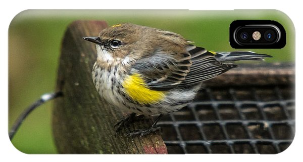 IPhone Case featuring the photograph Yellow-rumped-warbler by Robert L Jackson