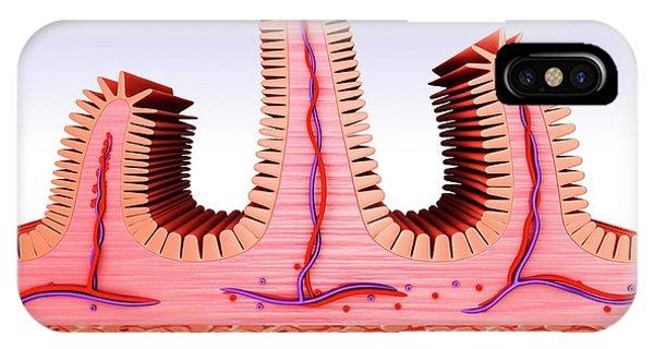 Small Intestine Phone Case by Pixologicstudio