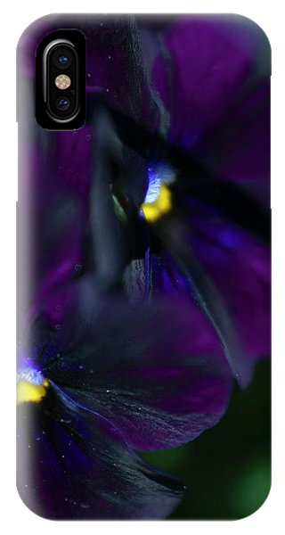 Pansy (viola X Wittrockiana) Phone Case by Maria Mosolova/science Photo Library