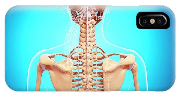 Female Skeleton Phone Case by Pixologicstudio/science Photo Library