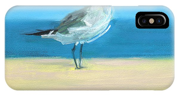 Seagull iPhone Case - Rcnpaintings.com by Chris N Rohrbach