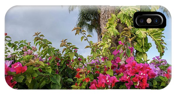 Bougainvillea iPhone Case - Dominican Republic, Punta Cana, Higuey by Lisa S. Engelbrecht
