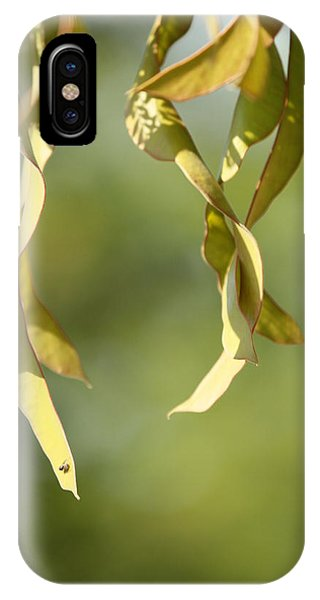 Nature Phone Case by Tinjoe Mbugus