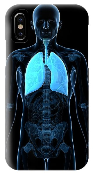 Healthy Lungs Phone Case by Sciepro/science Photo Library