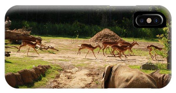 Nature Phone Case by Tinjoe Mbugus