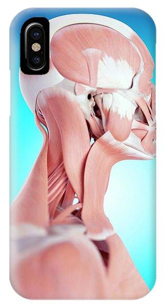 Human Neck Muscles Phone Case by Sebastian Kaulitzki/science Photo Library