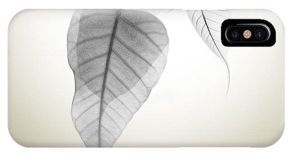 Leaf iPhone Case - Pho Or Bodhi by Atiketta Sangasaeng