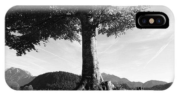 Wiese iPhone Case - Alpine Tree by Falko Follert