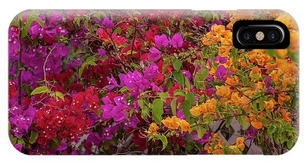 Bougainvillea iPhone Case - Bahamas, Eleuthera, Princess Cays by Lisa S. Engelbrecht
