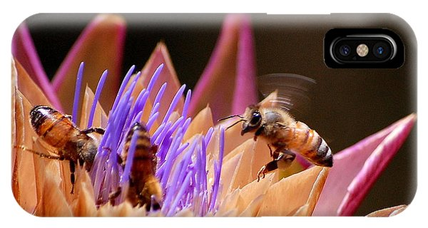 Bees In The Artichoke IPhone Case
