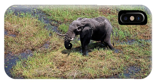 Botswana, Okavango Delta Phone Case by Kymri Wilt